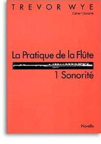 WYE T. LA PRATIQUE DE LA FLUTE: 1 SONORITE