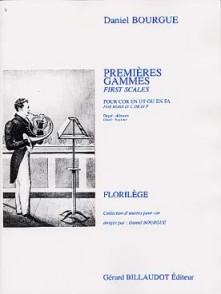 BOURGUE D. PREMIERES GAMMES COR