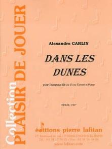 CARLIN A. DANS LES DUNES TROMPETTE