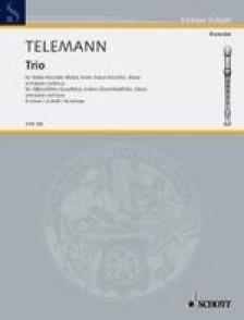 TELEMANN G.P. TRIO  D MINOR FLUTE A BEC ALTO, VIOLON ET B.C.
