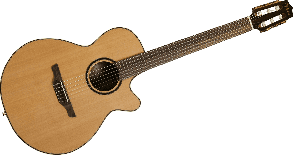 TAKAMINE P3FCN NATUREL