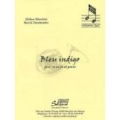 NAULAIS J./SAUTEREAU H. BLEU INDIGO COR