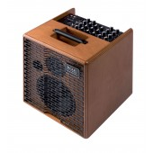 AMPLI ACUS ONE-5T WOOD