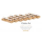 MEINL SONIC ENERGY - SET DE 7 CHIMES CHAKRA SET-CHA-7