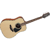 TAKAMINE GD10-NS NATUREL SATIN