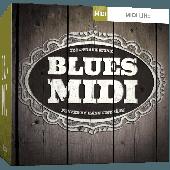 TOONTRACK TT161 BLUES SOUL & ROOTS BLUES MIDI