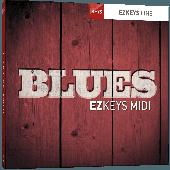 TOONTRACK TT224 BLUES MIDI