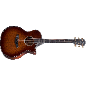 TAYLOR 324CE V-CLASS BUILDER'S EDITION