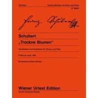 SCHUBERT F. VARIATIONS ON TROCKNE BLUMEN FLUTE