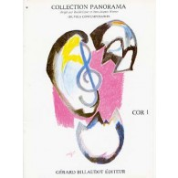 PANORAMA COR 1
