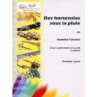 TANAKA K. DES HORTENSIAS SOUS LA PLUIE EUPHONIUM