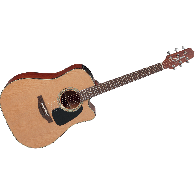TAKAMINE P1DC NATUREL