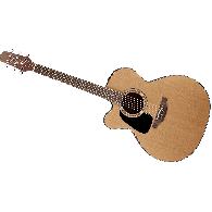 TAKAMINE P1JC-LH NATUREL GAUCHER