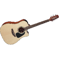 TAKAMINE P2DC NATUREL