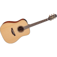 TAKAMINE P3D NATUREL