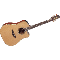 TAKAMINE P3DC12 NATUREL