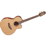 TAKAMINE P3MC NATUREL
