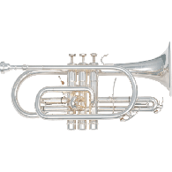 CORNET SML NATION CO870-S LAITON ARGENTE